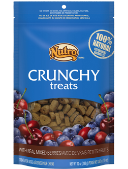 Nutro Crunchy Dog Treats