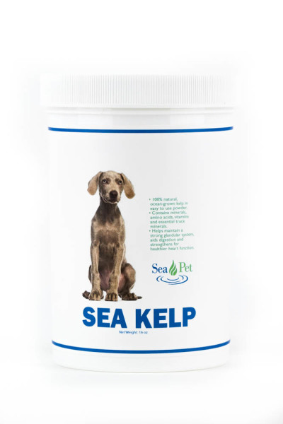 Sea Kelp Poweder 16oz