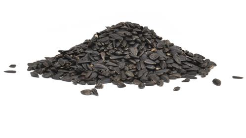 slideshow/Premium-Black-Oil-Sunflower-Seed-Res.jpg